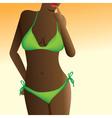 Summer bikinni vector image