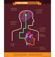 Brain and heart connected infographic vector image vector image