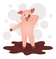 cute pig in the mud cartoon symbol of the year vector image
