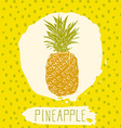 Pineapple hand drawn sketched fruit with leaf on vector image
