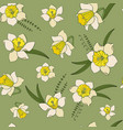 seamless pattern of narcissus flowers vector image