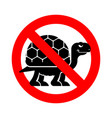stop turtle forbidden red road sign ban tortoise vector image vector image