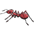 red ant vector image vector image