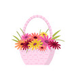 beautiful colorful flowers composition bouquet in vector image