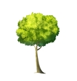 Big Green Tree vector image
