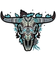 Buffalo Skull cool vector image