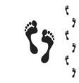 human footprint vector image
