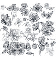 pack engraved high detailed flowers for design vector image