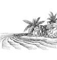 sea view small beach and palm trees vector image vector image