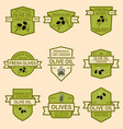 set of olive oil emblems design element for logo vector image vector image
