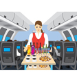 Stewardess in salon of the plane vector image
