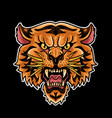 tiger head old school symbol vector image vector image