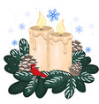 two christmas candles decoration cones vector image