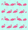 pink flamingo seamless pattern summer tropical vector image