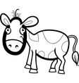 calf cartoon for coloring book vector image vector image