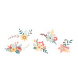 floral spring bouquet nature set isolated vector image