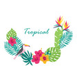 floral tropical leaves vector image vector image