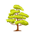 green tree isolated icon vector image