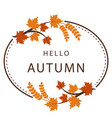 hello autumn maple leaf circle frame background ve vector image vector image