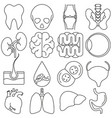 icons of human organs in the style of lines vector image vector image