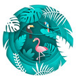toucan parrot and flamigo bird in tropical vector image