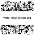 background with drawing herbs and flowers vector image vector image