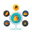 chicken farming icon and agriculture infographics vector image vector image