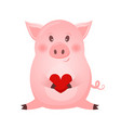 drawing of cute pig with heart vector image vector image