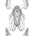 seamless texture with contour cicadas decorated vector image