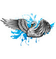 swan with splashes water vector image