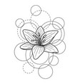 tattoo with lily and circles on white background vector image vector image