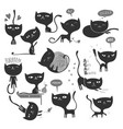 13 black cats vector image