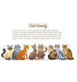 cute cartoon cats family staing together front vector image vector image