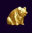 golden pig low vector image