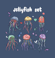 jelly fish set vector image vector image