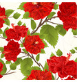 seamless texture branch red hibiscus tropical vector image vector image