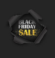 torn paper black friday sale vector image