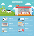 milk production infographics in flat style vector image
