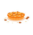 almond pies with almond sliced vector image