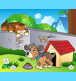 backyard with cartoon cat and dog vector image vector image