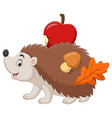 cartoon little hedgehog carries an apple with mush vector image vector image