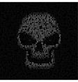code texture skull vector image vector image