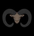 Ovis mouflon vector image
