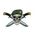 paratrooper skull with crossed knives design vector image vector image