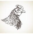 sketch hen vector image vector image