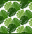 tropical leaves seamless pattern hand vector image