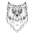 Bird owl head triangular icon vector image
