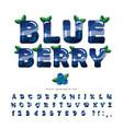 blueberry summer font cartoon 3d alphabet vector image