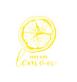 lemon drawing linear vector image vector image