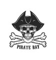 pirate skull with crossbones design elements for vector image vector image
